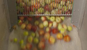 Saft aus Äpfeln